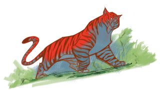animation sketches: image of a tiger