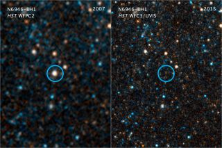 The Largest Black Holes in the Universe Formed in a Snap — Then Stopped