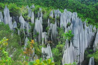 the stone pinnacles of Mulu National Park in Malaysia