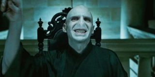 Ralph Fiennes in Harry Potter and the Deathly Hallows - Part 1
