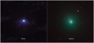 Christmas Comet.Christmas Comet 46p Is Making The Season Bright And Green