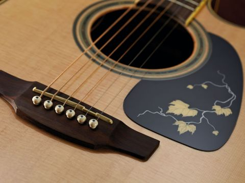 Given the modest price tag, Takamine has paid considerable attention to detail on the EG50TH