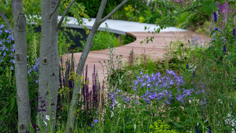 garden path ideas – the cancer research uk legacy garden by tom simpson for hampton court 2021