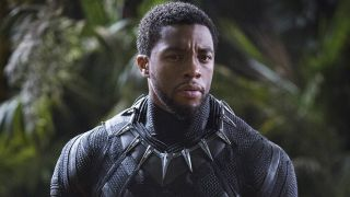 An image from the Black Panther movie