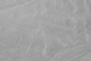 nazca lines the monkey
