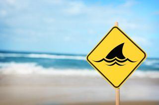 A shark sign at the beach.