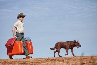 Red Dog True Blue Levi Miller Phoenix