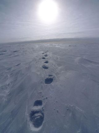 coldest-places-intro-101216-02