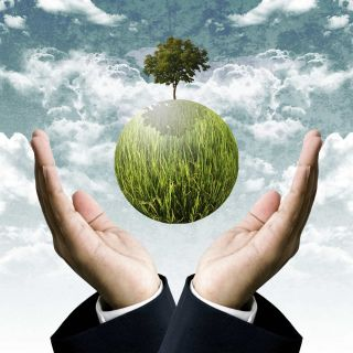 Two hands form a protective shield around a grassy globe with single tree.