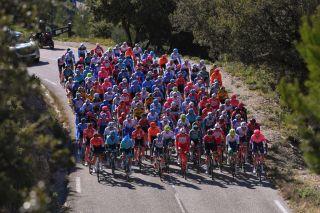 The peloton at the our de La Provence