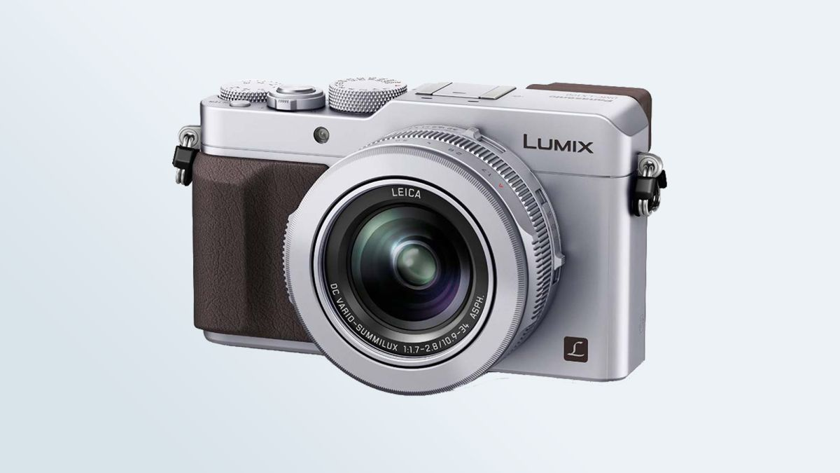 Best Bridge Cameras 2019 - From Sony, Canon, Panasonic & Nikon