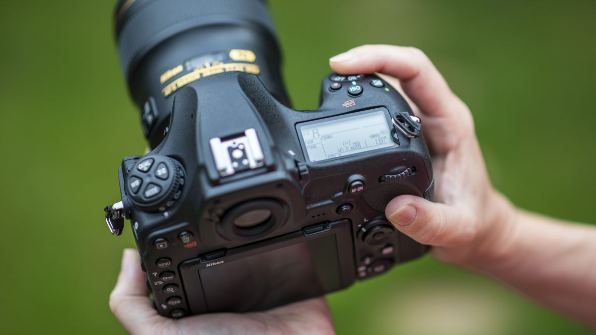 Camera Settings For Wedding Photography Nikon: 10 Camera Settings You Need To Learn To Master Your Nikon