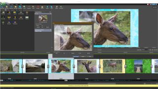 Best photo slideshow software and apps 2021