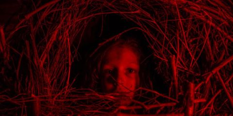 The reds are bright in 'A Classic Horror Story.'