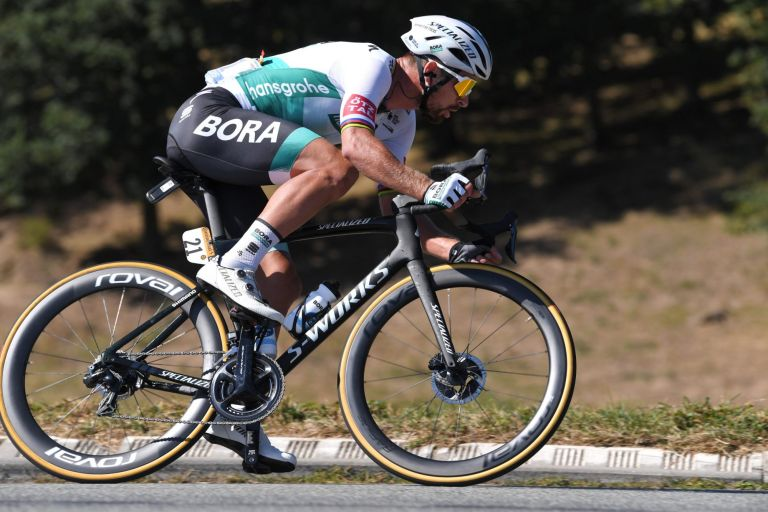 Stage 14 Tour de France 2020