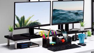 best cheap monitors 2021