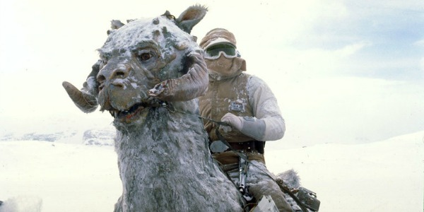 Han Solo on a tauntaun