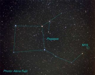 pegasus constellation
