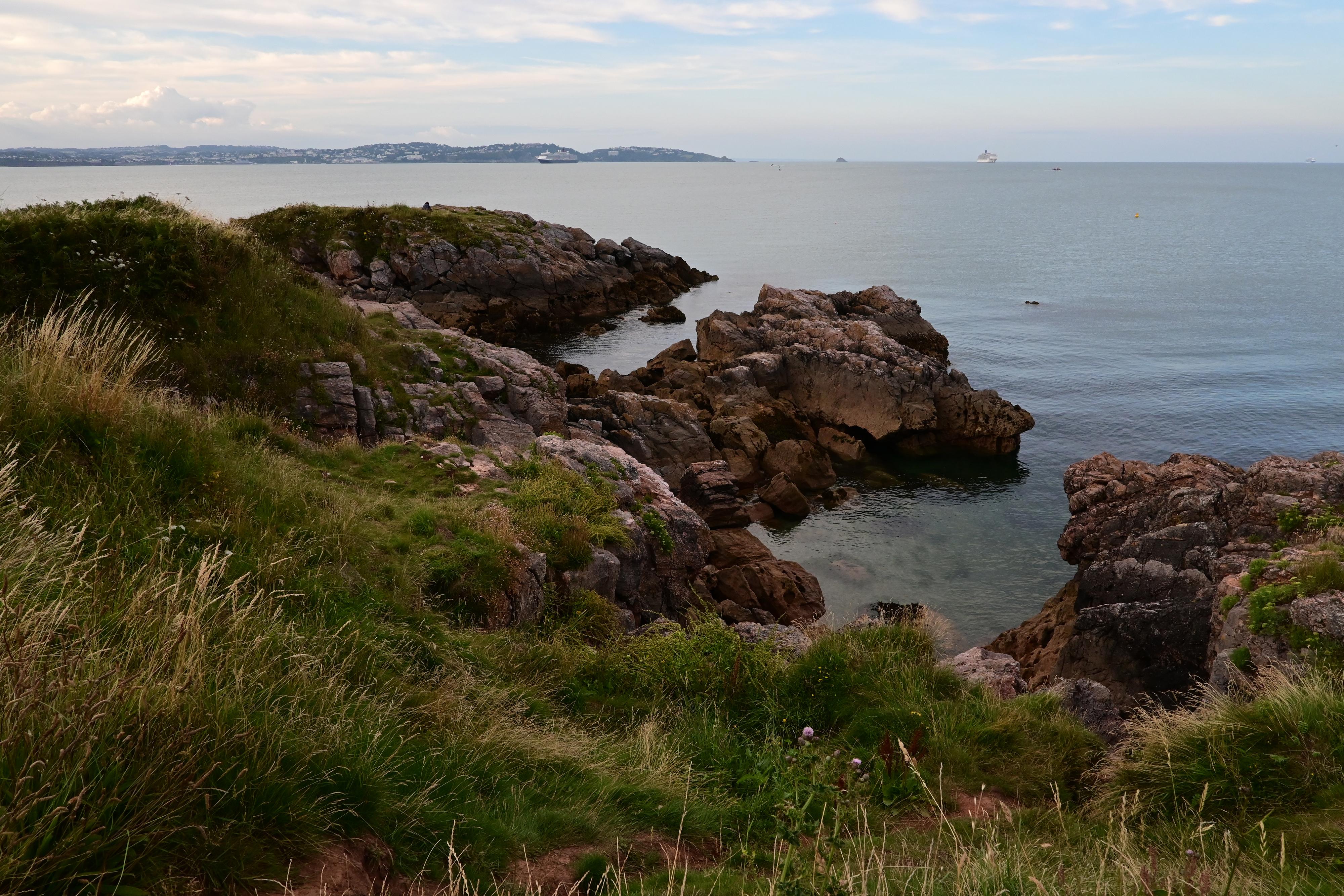 Grassy coastline in front of the sea
