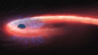 The black hole shreds the star into thin strands, which it wraps around itself like a ball of yarn.