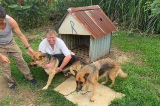 This Weird Meteorite Crashed Through a Doghouse in Costa Rica. (The Dog's Fine)