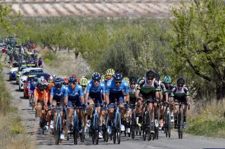Cycling: Murcia Tour / Vuelta Murcia / Etapa 1 / Stage 1 / BUNCH / PELOTON / TORRES BARCELO, Albert (ESP) ELOSEGUI, Iñigo (ESP) OLIVEIRA, Nelson (POR) CARRETERO, Hector (ESP) / Los Alcázares - Caravaca De la Cruz (177,6 Km) 14-02-2020/ Cycling: Murcia Tour / Vuelta Murcia / Etapa 1 / Stage 1 / Luis Angel Gomez ©PHOTOGOMEZSPORT2020