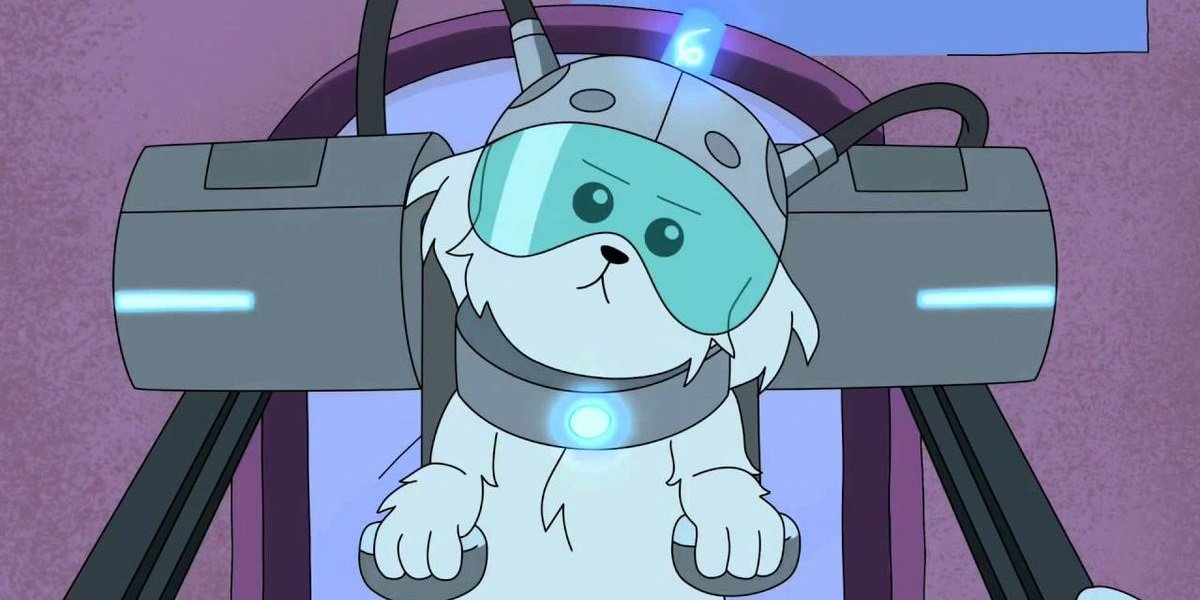 Snuffles or Snowball Rick and Morty Adult Swim