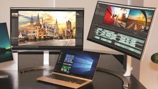 LG gram 15 and monitors