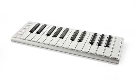 The keys themselves are standard size and you get two octaves of them
