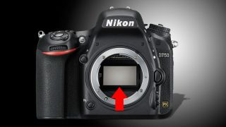 The Nikon D750 flare issue is traced to the AF sensor
