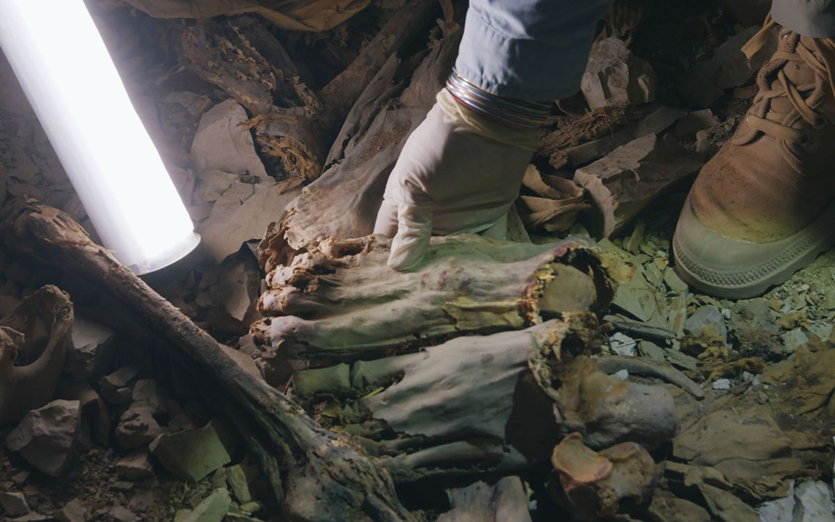 60 Ancient Egyptian Mummies Entombed Together Died 'Bloody, Fearsome Deaths'