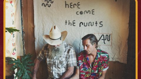 Cover art for Awolnation - Here Come The Runts album