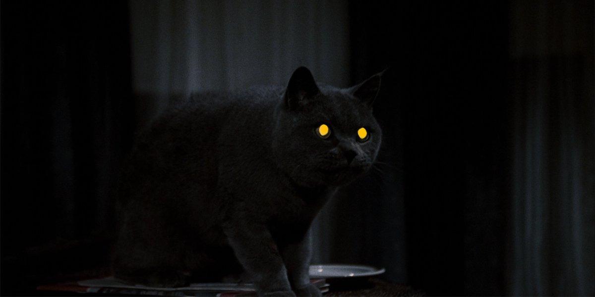 Pet Sematary 1989 Church eyes glowing