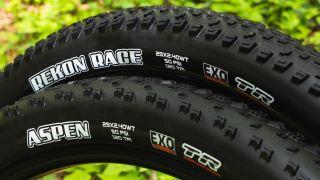 Maxxis Rekon Race and Aspen go WT