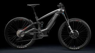 Italian e-bike