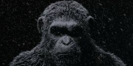 We Just Watched The First War For The Planet Of The Apes Footage, Here's What We Saw