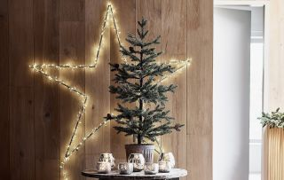 Silver and frosty to a warm winter glow, there are many ways to decorate a Christmas tree. But whether you reach for the red tinsel or the white this year, ...