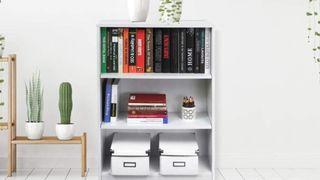 Amazon bookshelves