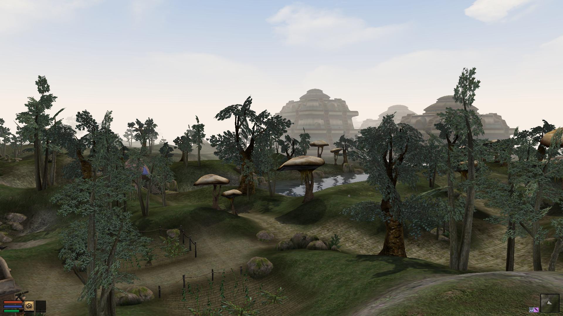 Morrowind's graphics extender mod