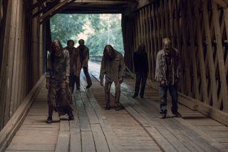 The Walking Dead AMC Networsk