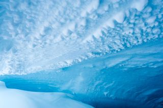 This photo from December 2014 shows the frozen ceiling and icy walls of a cave on Mount Erebus in Antarctica.