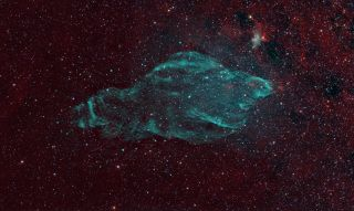 W50 Supernova Remnant