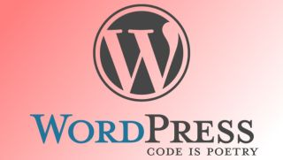 Wordpress is the world's most popular CMS