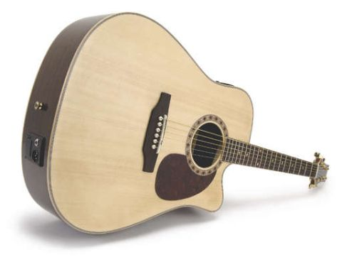 The solid Engelmann spruce top really contributes to the Ashton's tonal warmth