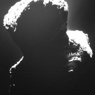 Comet 67P's Dark Side