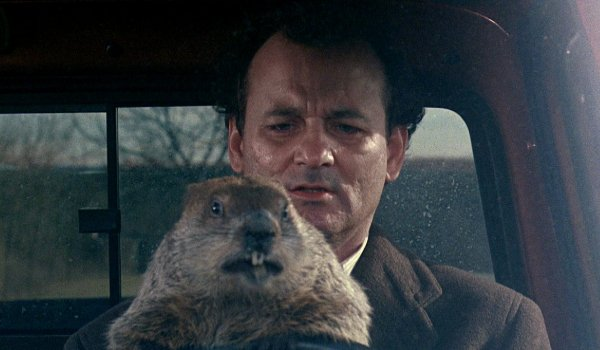 Groundhog Day Bill Murray drives with Punxsutawney Phil on his lap