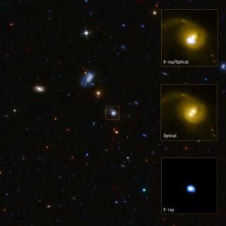 cid 42 black hole