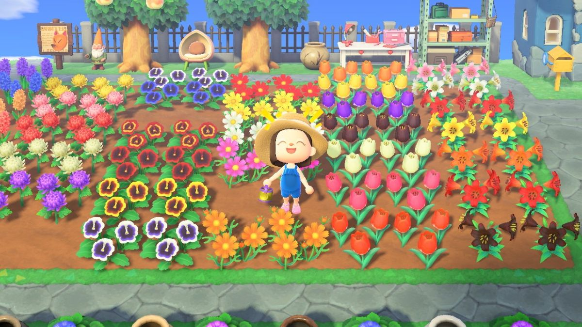How To Create Hybrid Flowers In Animal Crossing New Horizons