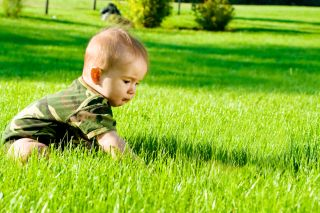 A baby sits and plays on a lush green lawn