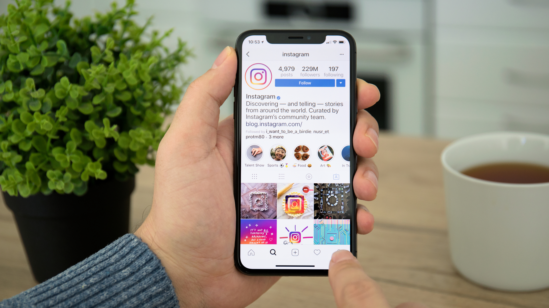 Instagram's new Co-Watching feature lets friends browse together ...